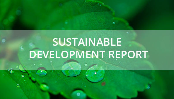 Sustainable development report